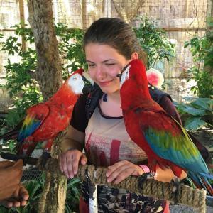 Papagáj s lektorom